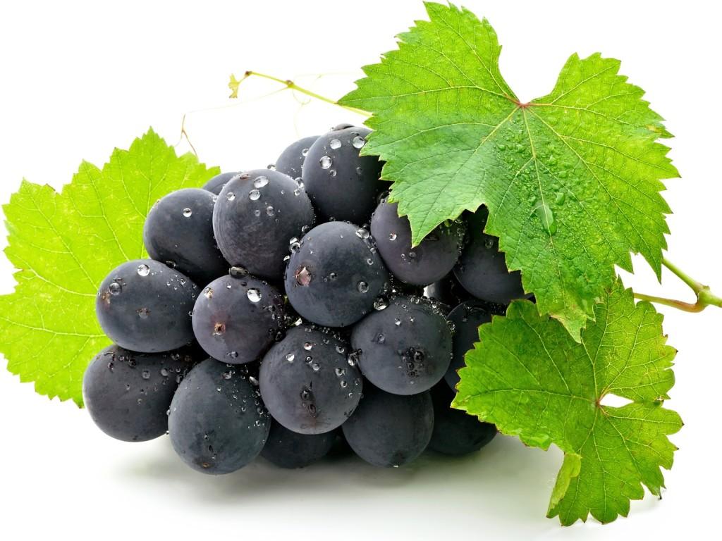 Pequeno cacho de uvas roxas