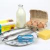 Alimentos que possuem Vitamina D
