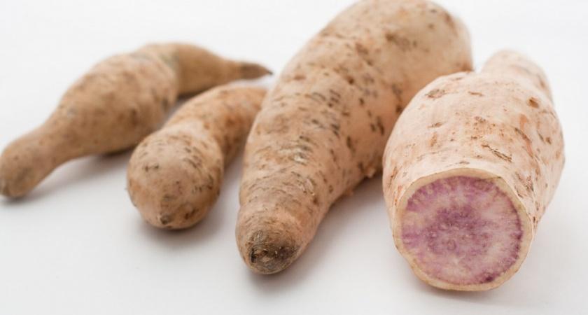 Batata doce – Veja os principais benefícios